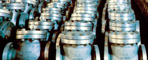 products_CHECKvalves